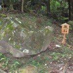 【観光】亀の形をしているので亀石と呼ばれています