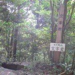 【観光】山道を登ること10分、やっと文字岩が見えてきました。