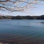 【御池】霧島東神社よりキャンプ村へ下った場所から