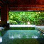 大きな窓一面に四季の彩も楽しめる大浴場。お湯はもちろん天然温泉です。