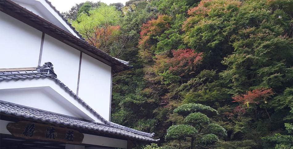 静流荘横の紅葉